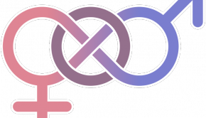 bisexualidad 290x166 - 5 Datos científicos sobre la bisexualidad