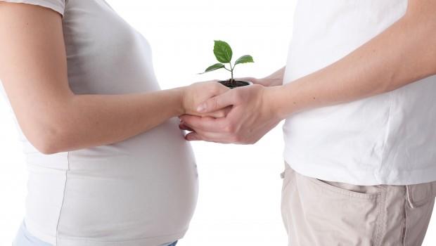 fertilidad 620x350 - 5 Alimentos para mejorar tu fertilidad