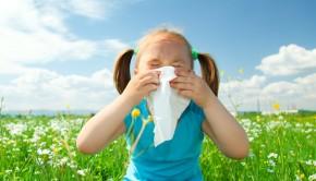 alergias primaverales 2 290x166 - Qué son las alergias primaverales y qué podemos hacer contra ellas