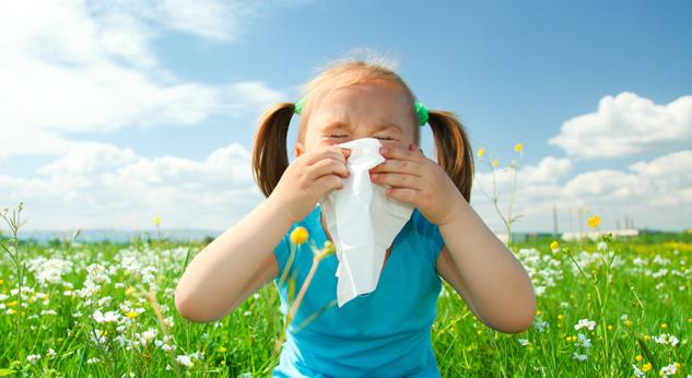 Resultado de imagen de alergia