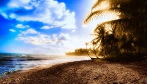 toxinas 1 290x166 - 7 consejos para pasar un verano libre de toxinas