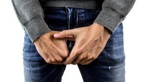 testicles 2790218  340 290x166 - La calidad del semen va mucho más allá de la reproducción