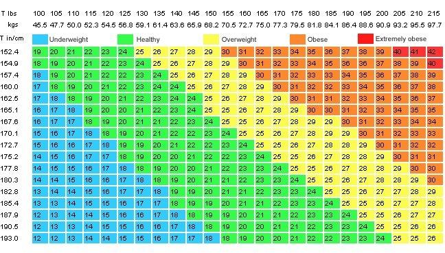 Resultado de imagen de como es indice de masa corporal