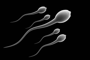 Mejorar _la_calidad_del_esperma