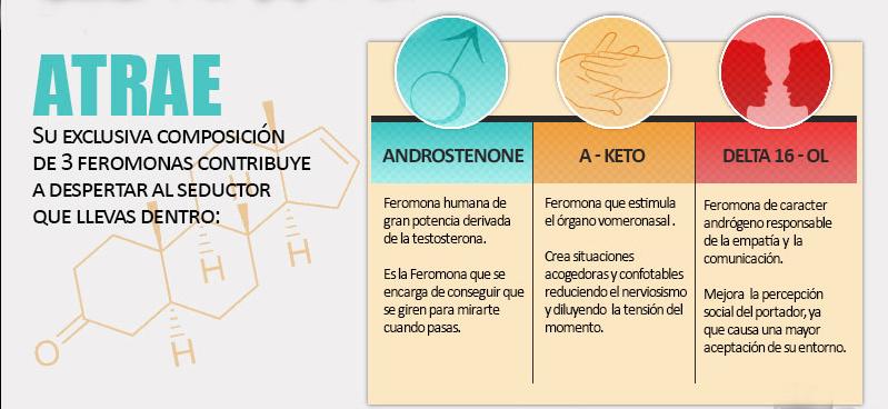 Feromonas: Androstenone, A-keto y Delta 16-OL