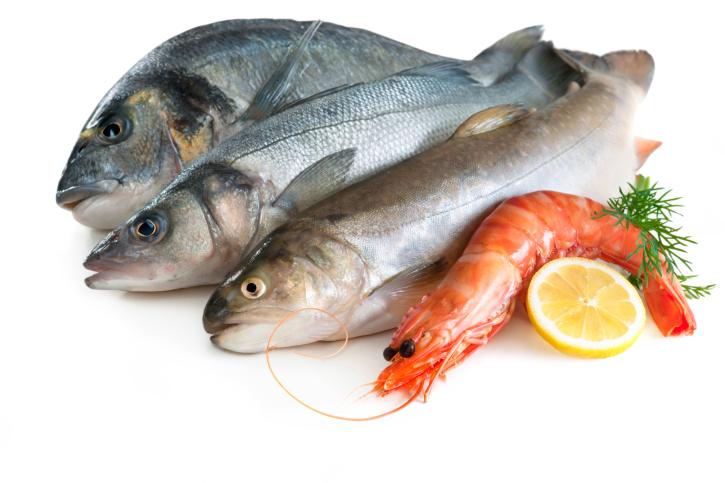 fertilidad pescado