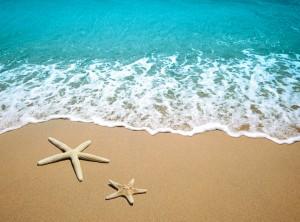 Cosas que hacer en verano (2)