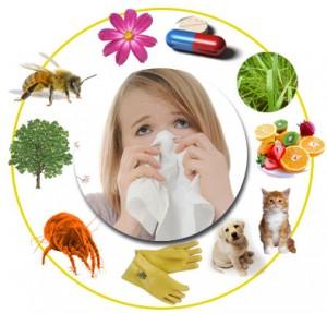 que-es-la-alergia