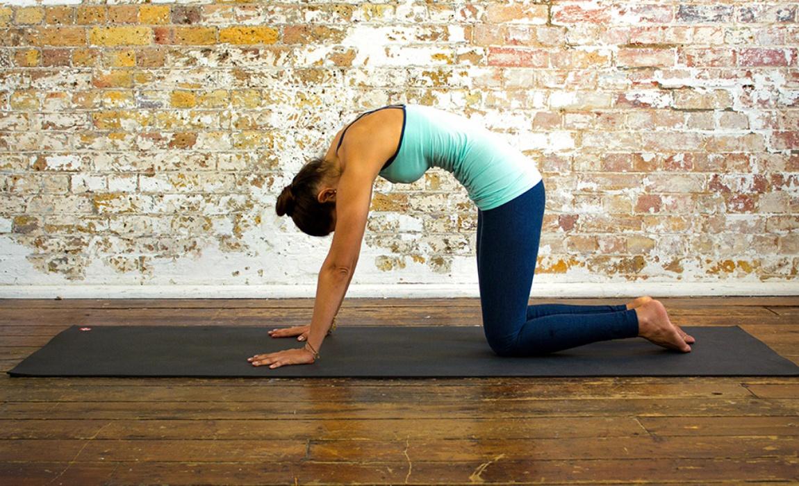 pose-gato-potencia-sexual-yoga