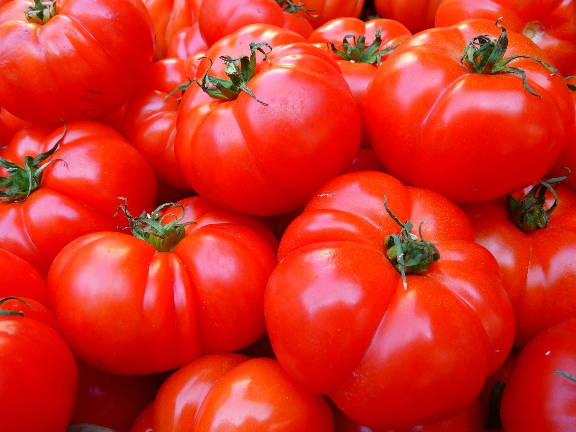 sopa-quema-grasa-tomates